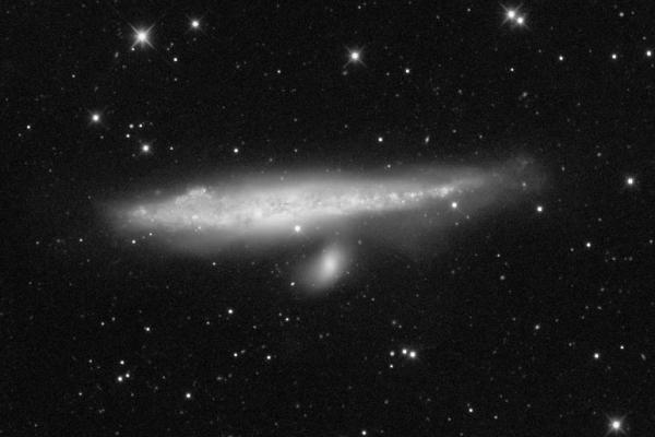 A Bálna- és Hokiütő galaxis