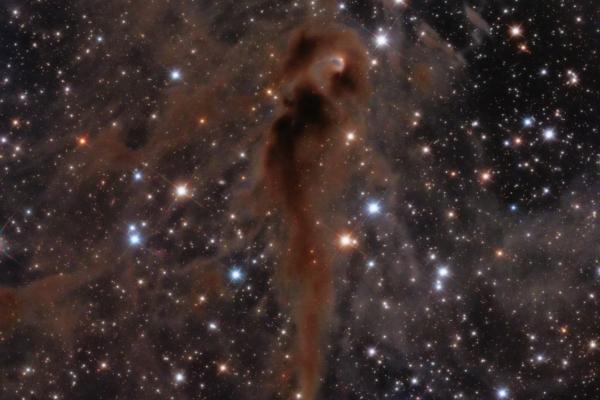 The Foal Nebula