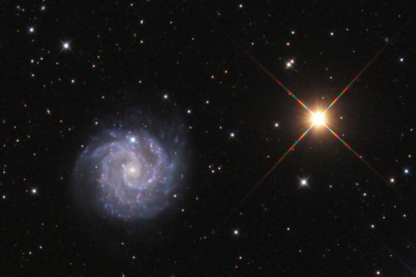 NGC3184 galaxy